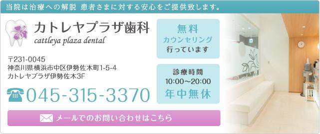 カトレヤプラザ歯科 045-315-3370 診療時間10:00~20:00 年中無休 メールでのお問い合わせはこちら 無料カウンセリング行っています